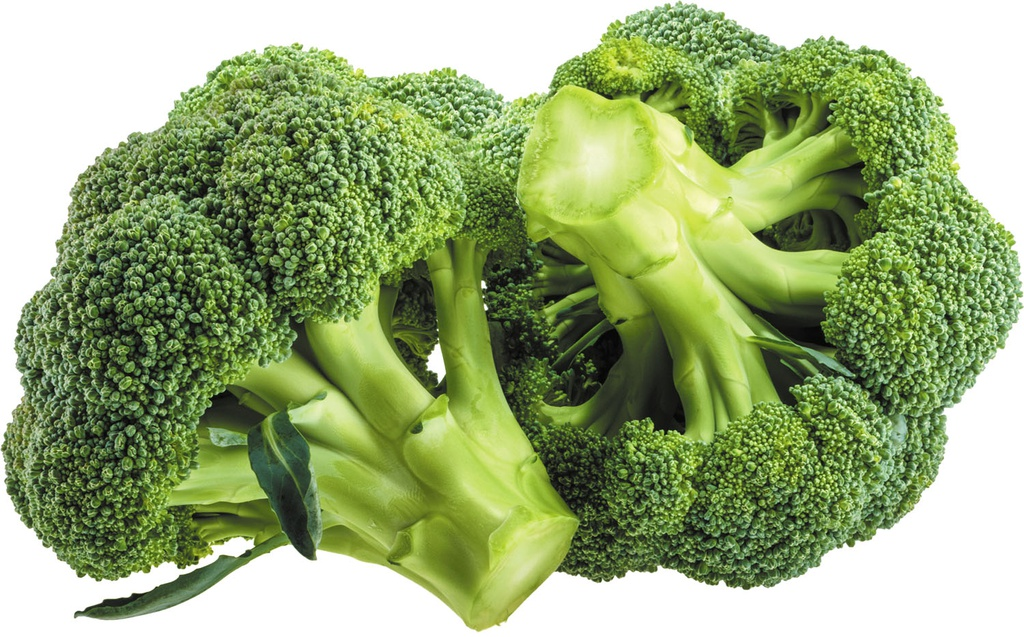 LEVARHT Broccoli packed with Ice 100g (Origin: Spain)